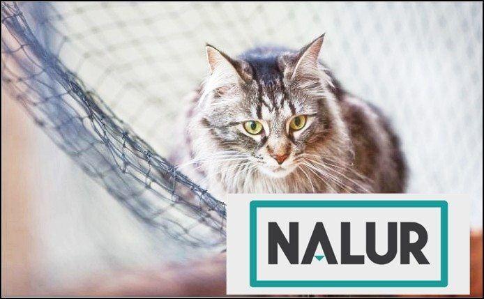 Siatki zabezpieczająca dla domu - siatki dla kotów