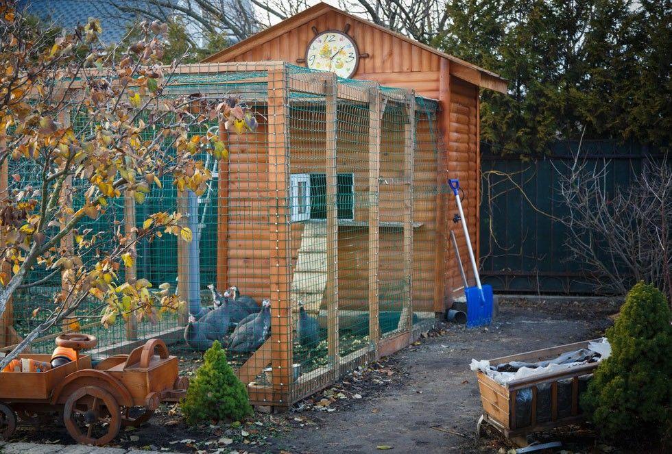 Siatki zabezpieczające na ogród